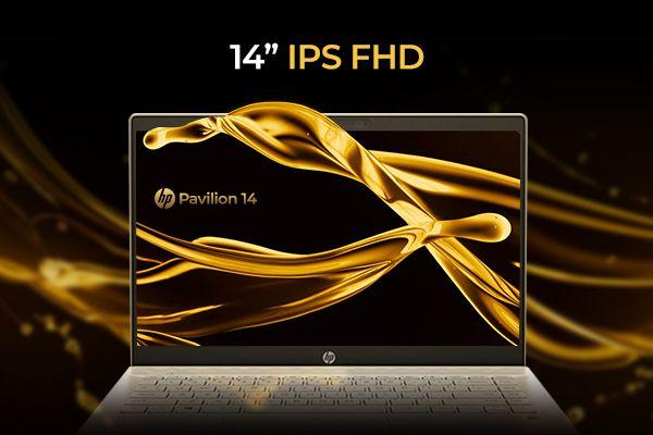 Màn hình 14 inch Full HD