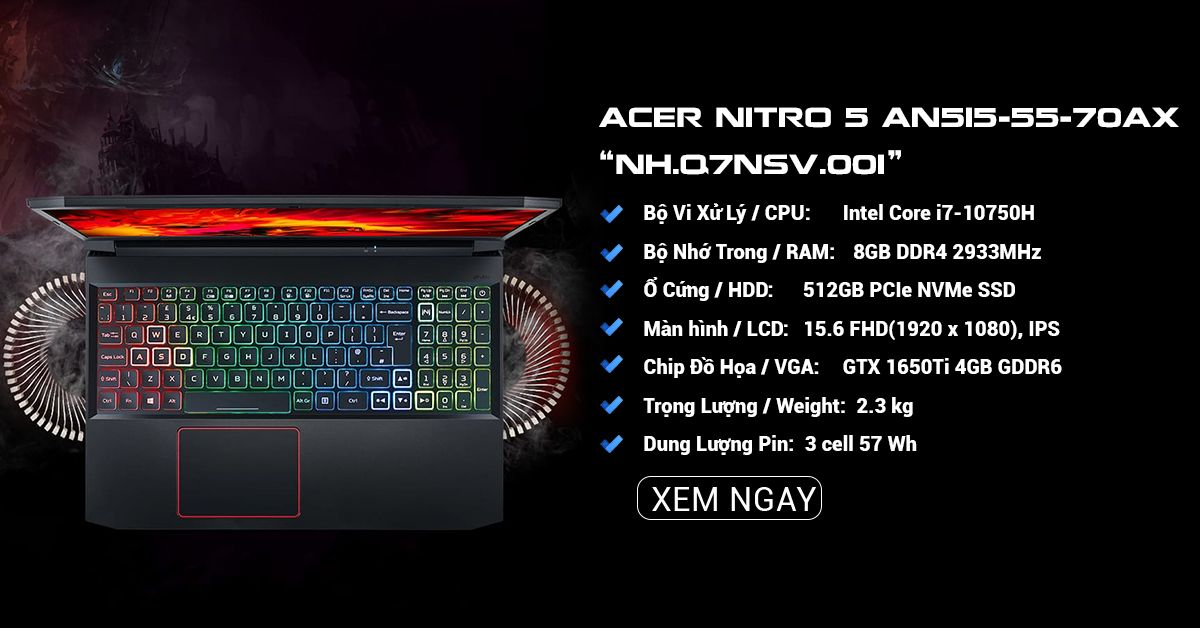 ACER NITRO 5 AN515-55-70AX (NH.Q7NSV.001)